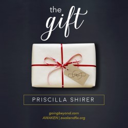 The Gift - Website Teaser B
